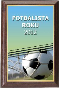 Døevìná plaketa - fotbal - PLP3M1