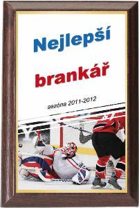 Døevìná plaketa - hokej - PLP3M11