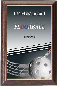 Døevìná plaketa - florbal - PLP3M12