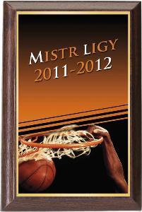 Døevìná plaketa - basketbal - PLP3M14