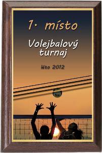 Døevìná plaketa - volejbal - PLP3M25