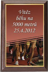 Døevìná plaketa - atletika - PLP3M22