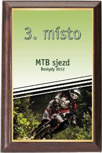 Døevìná plaketa - motorismus - PLP3M23