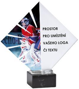 Hokejová trofej - ACL0015NM46