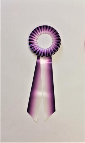 Kokarda - bílo-fialová - zvìtšit obrázek