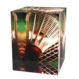 Badmintonová trofej - CR3065M10