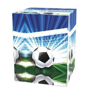 Fotbalová trofej - CR3065M15