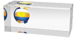 Volejbalová trofej - CR3066M3