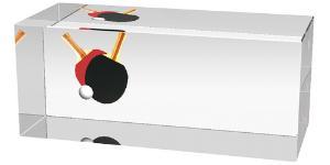 Ping pongová trofej - CR3066M9