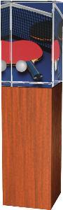 Ping pongová trofej - CR4021M9