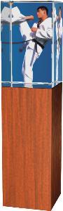 Karate trofej - CR4021M14