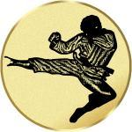 Emblém karate - LTK169