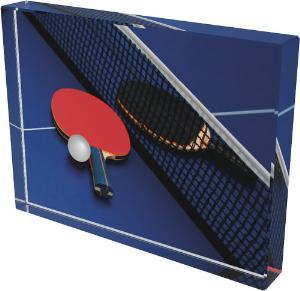 Ping pongová trofej - CR4044M17