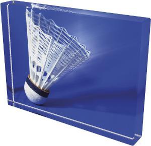 Badmintonová trofej - CR4044M18