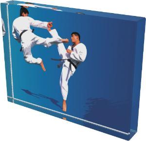 Karate trofej - CR4044M23
