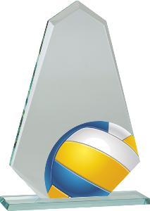 Volejbalová trofej - CRFM109