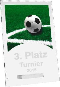 Fotbalová trofej - CR4244M2