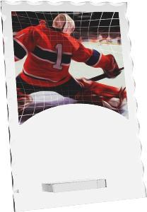 Hokejová trofej - brankáø - R4244M35