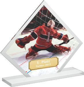 Hokejová trofej - brankáø - CR4145M5