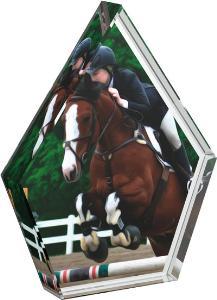 Jezdecká trofej - CR20218M33