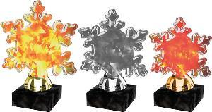 Zimní trofej - ACTS0004