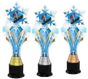 Snowboardingová trofej - ACTKS0012