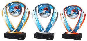 Snowboardingová trofej - ACRCSM4