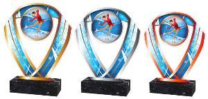 Krasobruslaøská trofej - ACRCSM14
