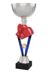 Boxerská trofej - ACUPSILVM16
