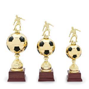 Fotbalový pohár - 12530