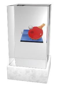 Ping pongová trofej - CRM0007M10