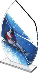 Sjezdové lyžování trofej - CRS3078M17