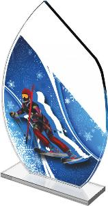 Sjezdové lyžování trofej - CRS3078M19