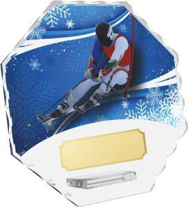Sjezdové lyžování trofej - CRS4143M17