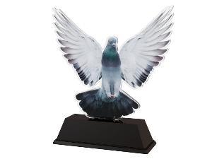 Plaketa holub - FA210M13 - zvìtšit obrázek