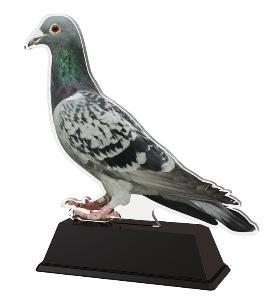 Plaketa holub - FA210M14 - zvìtšit obrázek