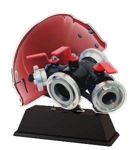 Plaketa hasiè - FA210M30 - zvìtšit obrázek