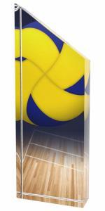 Volejbalová trofej - ACC1M14