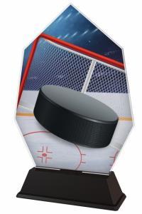 Hokejová trofej - ACSC1M08
