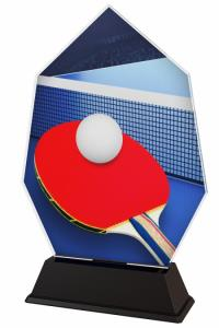 Ping pongová trofej - ACSC1M14
