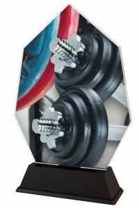 Vzpìraèská trofej - ACSC1M19 - zvìtšit obrázek