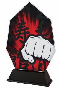 Karate trofej - ACSC1M21
