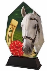 Jezdecká trofej - ACSC1M30
