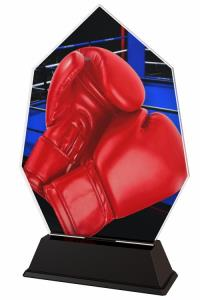 Boxerská trofej - ACSC1M32