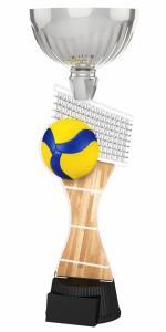 Volejbalová trofej - ACUPCSM09 - zvìtšit obrázek