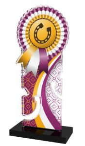 Jezdecká trofej - APLAM48