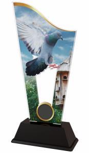 Chovatelská plaketa - holub - CASM13