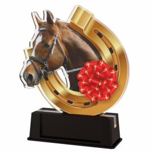 Jezdecká trofej - FA212M2