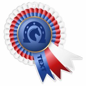 Medaile - jezdectví - MDAC0010M31