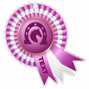 Medaile - jezdectví - MDAC0010M36 - zvìtšit obrázek
